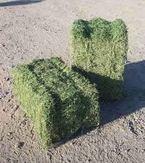 2-string bales laid flat and on-end